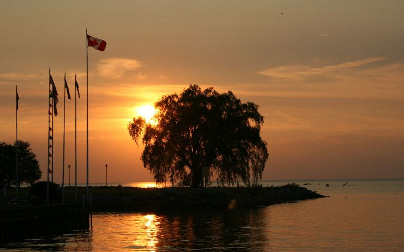 Try something New and Original while Renting a Cottage