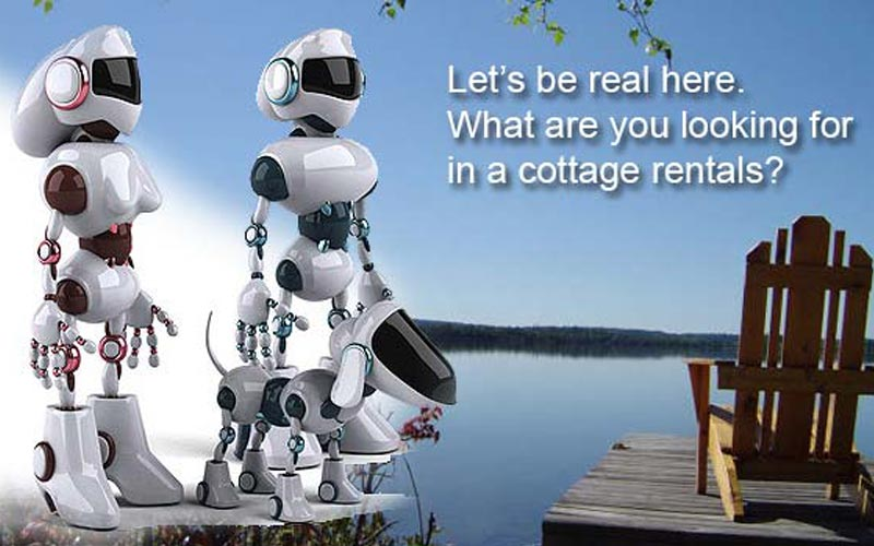 Cottage Electronics and the Ridiculously Stupid